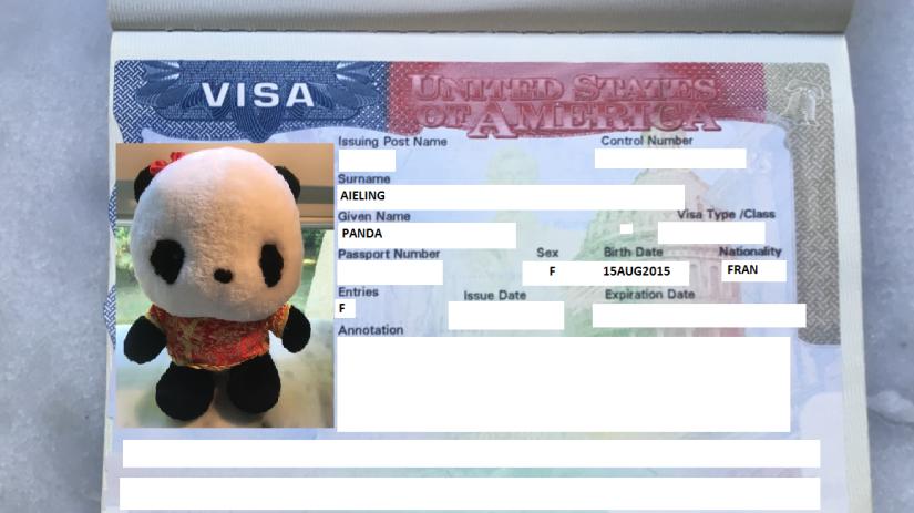 L'obtention du visa J1 /J2